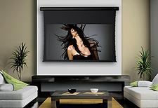 Stewart Filmscreen Projector Screen