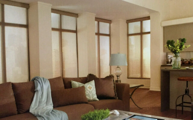 Screen Innovations retractable shades with control4